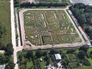 ems-2016-corn-maze-photo-3