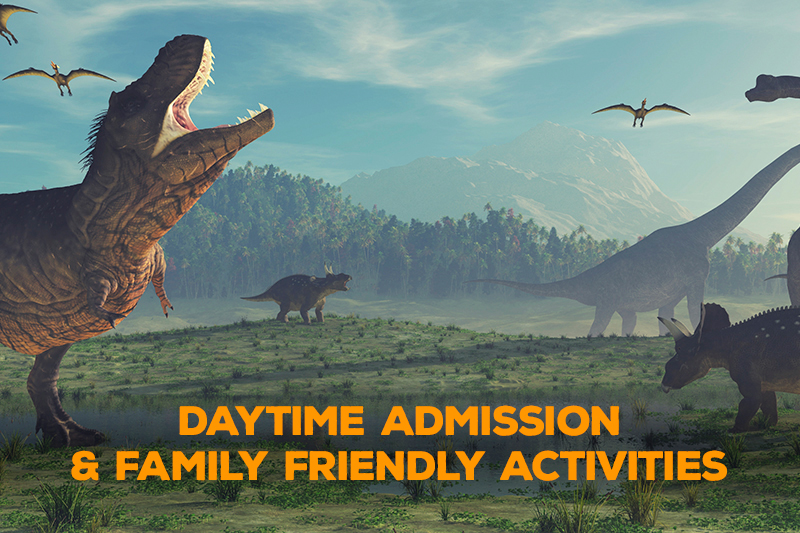 Farmer-Mike- Daytime Admission & Family-Friendly Activities
